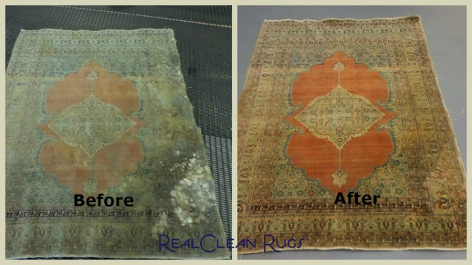 Mold damaged rug-labeled-WM